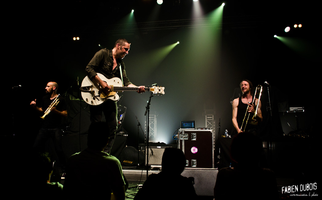 Photo Zebra Mambopunk Creusot Festival France 2015