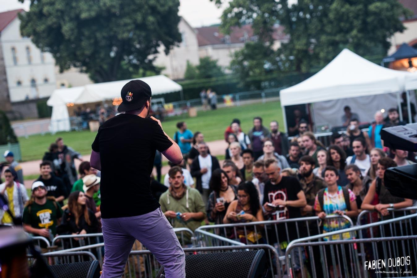 Photo Feuilles de Roots Grand Bastringue Festival Cluny Vendredi 2018