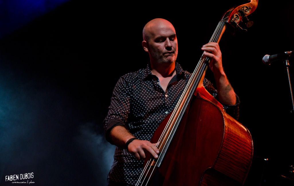 Photo Michel Jonasz Quartet Manu Katché Jean-Yves d'Angelo Jérôme Regard Ete Frappé Macon France 2015