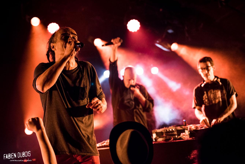 Photo Mike Riké Sinsémilia Soul Crucial  Cavazik Cave Musique Mâcon France 2017
